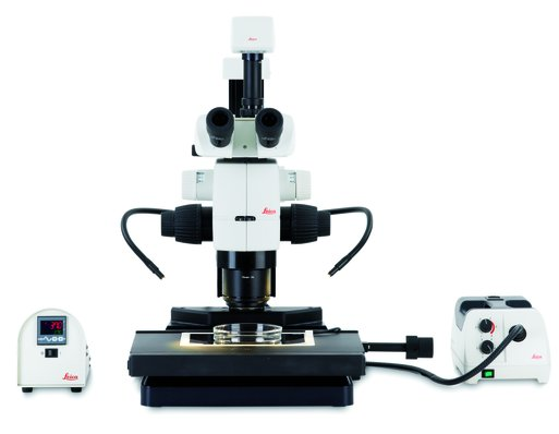 体视显微镜 Leica M125 C, M165 C, M205 C, M205 A